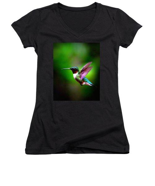 1846-007 - Ruby-throated Hummingbird Women's V-Neck T-Shirt (Junior Cut) by Travis Truelove