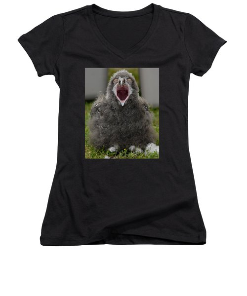 Baby Snowy Owl Women's V-Neck T-Shirt