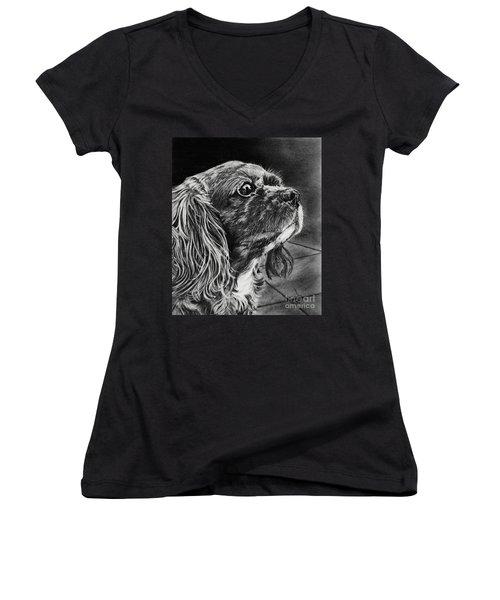 Cavalier II Women's V-Neck T-Shirt (Junior Cut) by Terri Mills