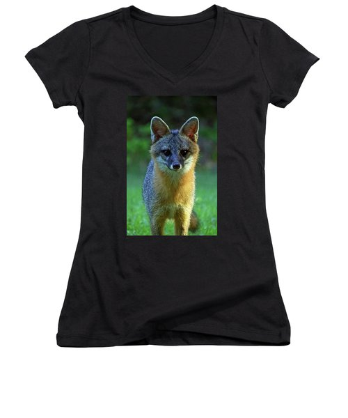 Fox Women's V-Neck (Athletic Fit)