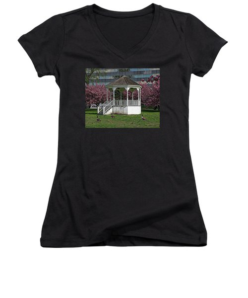 Gazebo In The Park Women's V-Neck