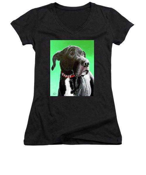 Gypsy Women's V-Neck T-Shirt (Junior Cut) by Stan Hamilton