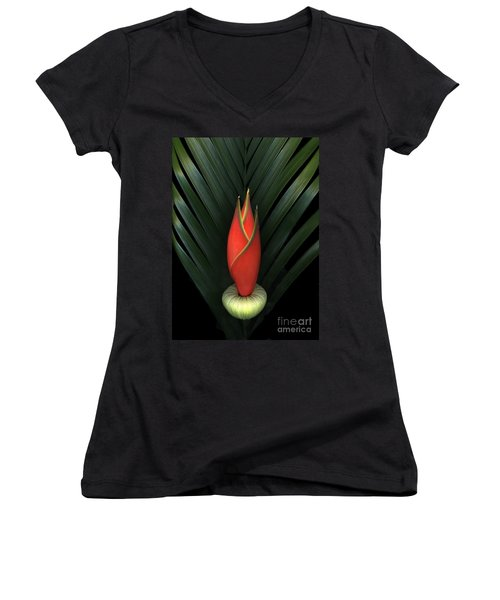 Palm Of Fire Women's V-Neck (Athletic Fit)