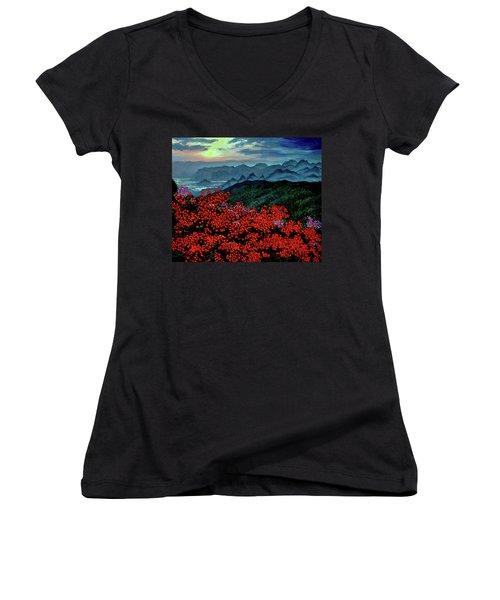 Paradise Women's V-Neck T-Shirt (Junior Cut) by Stan Hamilton