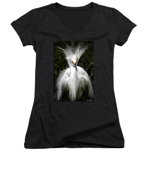 Snowy Egret Women's V-Neck T-Shirt