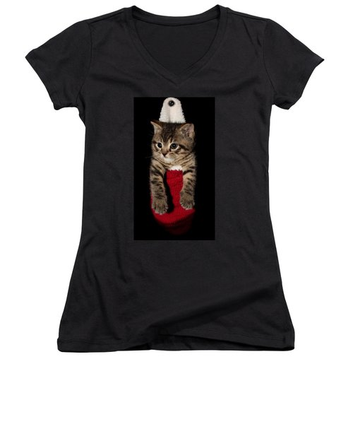 2010 Stocking Cat 2 Women's V-Neck (Athletic Fit)