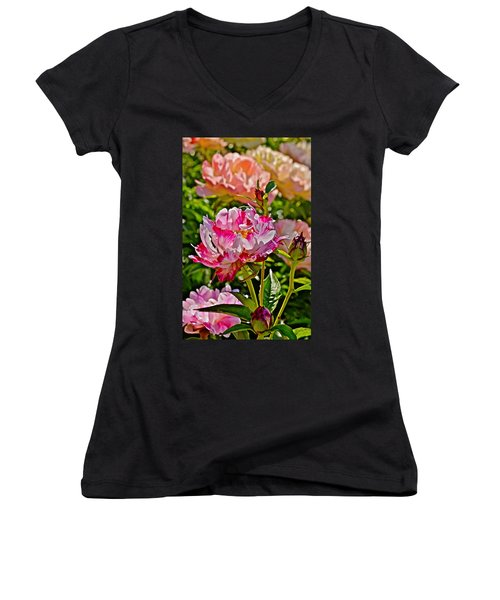 2015 Summer's Eve At The Garden Candy Stripe Peony Women's V-Neck