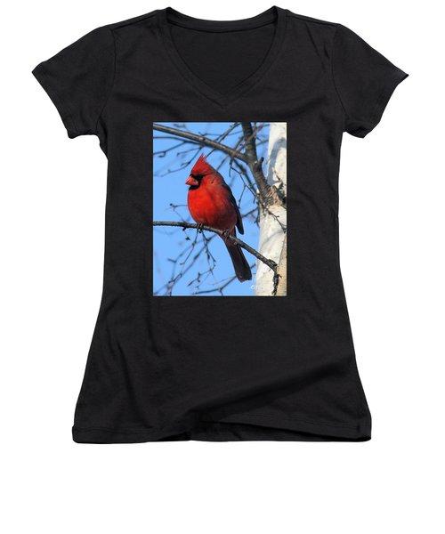 Northern Cardinal Women's V-Neck