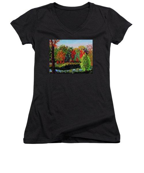 Sewp 10 10 Women's V-Neck T-Shirt (Junior Cut) by Stan Hamilton