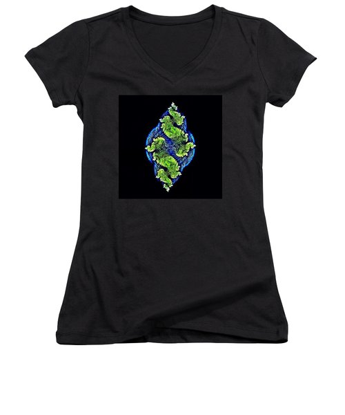 Tautological Fractals Women's V-Neck (Athletic Fit)