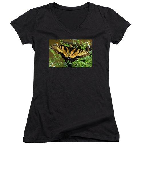 Tiger Swallowtail Women's V-Neck