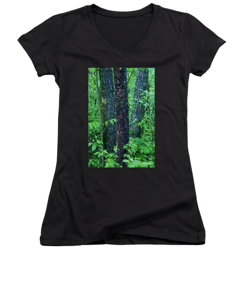 3 Trees Women's V-Neck