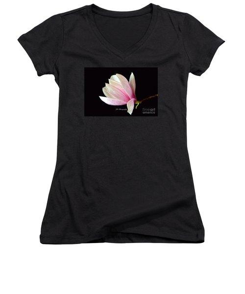Welcome Spring Women's V-Neck T-Shirt