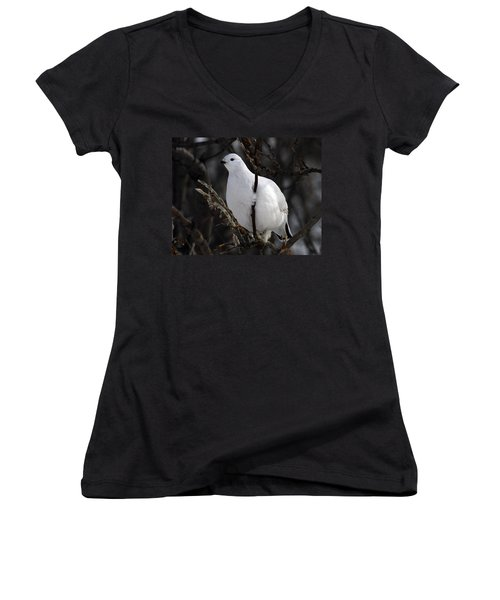 Willow Ptarmigan Women's V-Neck (Athletic Fit)