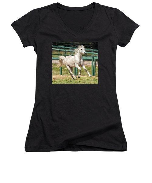 Arabian Horse Running Women's V-Neck