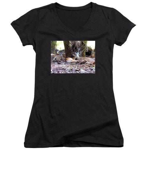 4 Wild Deer Women's V-Neck T-Shirt (Junior Cut) by Rosalie Scanlon