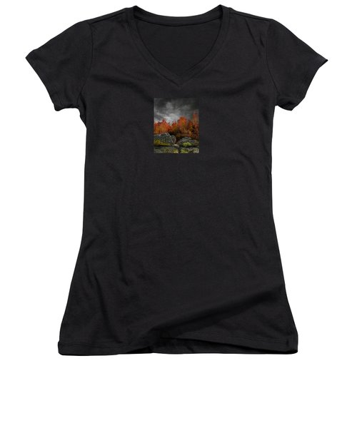 4004 Women's V-Neck T-Shirt