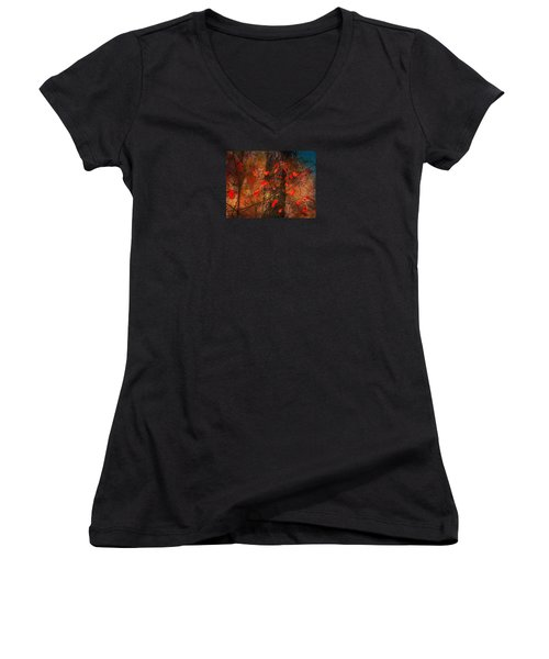 4019 Women's V-Neck T-Shirt