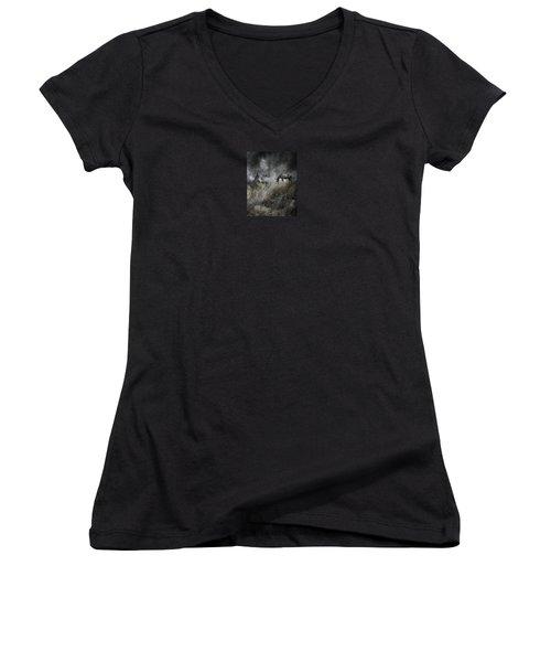 4099 Women's V-Neck T-Shirt (Junior Cut) by Peter Holme III