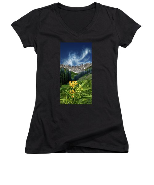 Women's V-Neck T-Shirt (Junior Cut) featuring the photograph 4415 by Peter Holme III