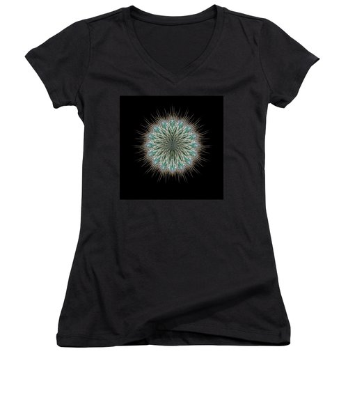 Women's V-Neck T-Shirt (Junior Cut) featuring the photograph 4418 by Peter Holme III