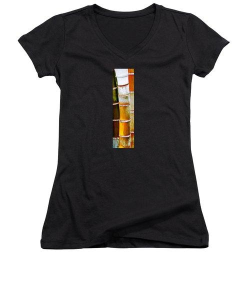Bamboo Palm Women's V-Neck T-Shirt