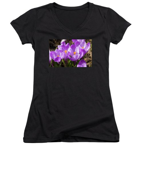 Purple Crocuses Women's V-Neck T-Shirt