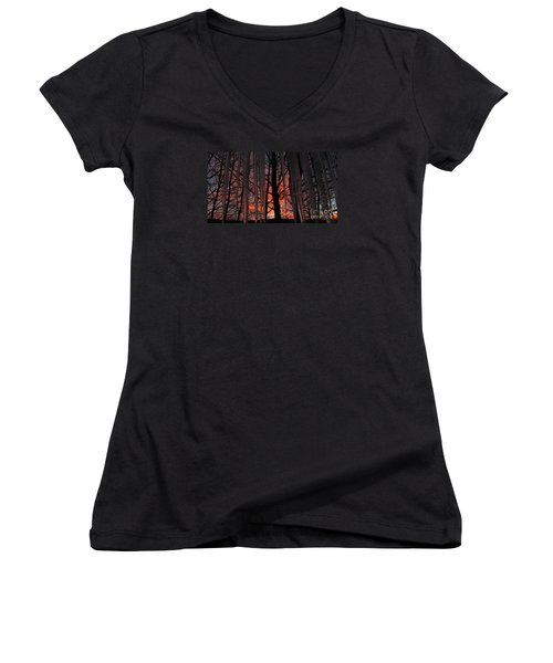737am Women's V-Neck T-Shirt (Junior Cut) by Janice Westerberg