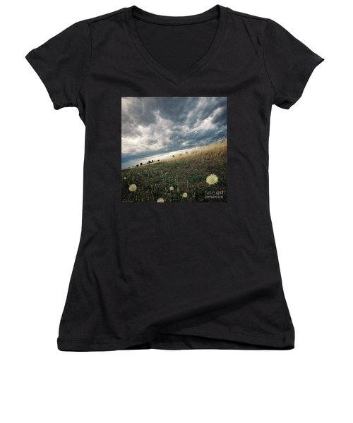 A Bug's View Women's V-Neck (Athletic Fit)