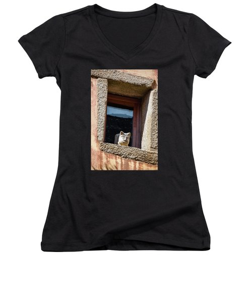 A Cat On Hot Bricks Women's V-Neck