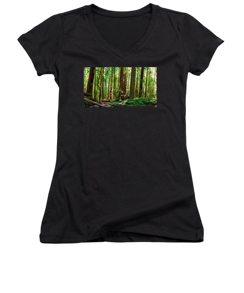 A Family Of Redwoods Panorama Women's V-Neck