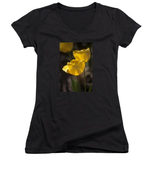 A Happy Spring Moment Women's V-Neck T-Shirt (Junior Cut) by Morris  McClung