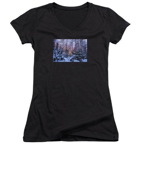 A Hidden Trail Women's V-Neck T-Shirt (Junior Cut) by Dan Hefle