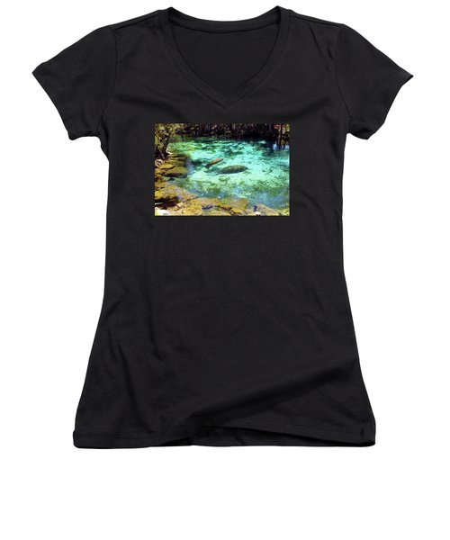 A Manatee Calf And Cow  Women's V-Neck (Athletic Fit)