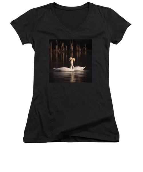 A Painting Of A Pair Of Mute Swans Women's V-Neck T-Shirt (Junior Cut) by John Edwards