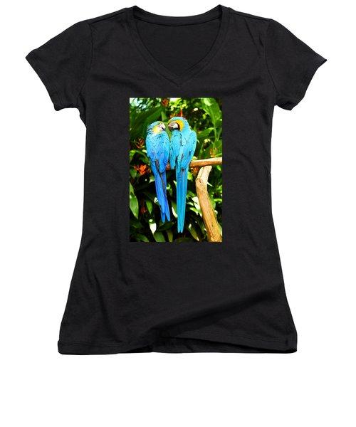 A Pair Of Parrots Women's V-Neck