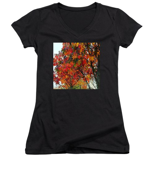 A Riot Of Color Sweet Gum Trees Women's V-Neck (Athletic Fit)