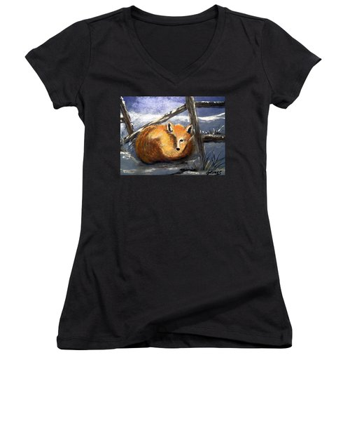 Women's V-Neck T-Shirt (Junior Cut) featuring the painting A Safe Place To Sleep by Carol Grimes