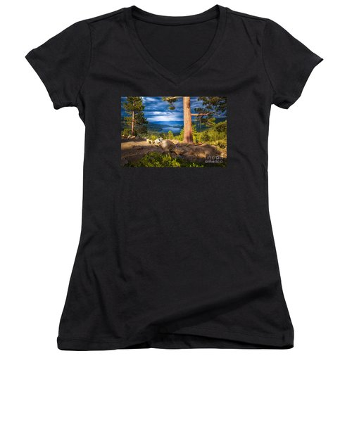 A Swing With A View Women's V-Neck