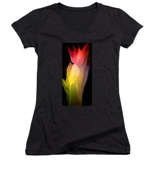 Abstract 082312 Women's V-Neck T-Shirt