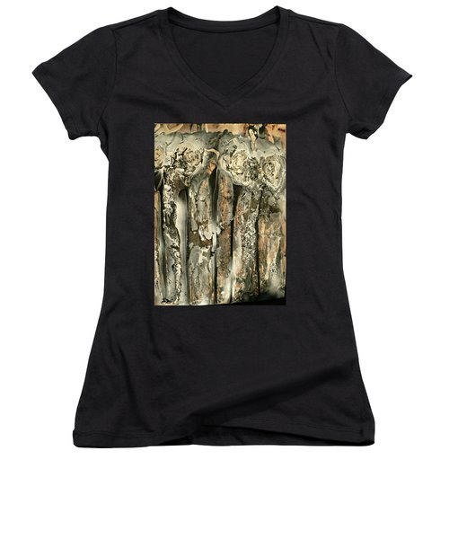 Unveiling Women's V-Neck