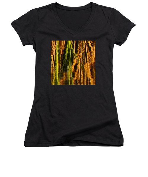 Abstract Reeds Triptych Middle Women's V-Neck