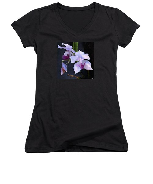 Acacallis Cyanea. Orchid Women's V-Neck T-Shirt (Junior Cut) by Anthony Fishburne