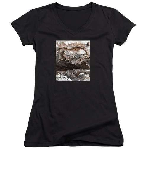 Women's V-Neck T-Shirt (Junior Cut) featuring the photograph Adventure by Ray Shrewsberry
