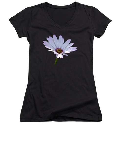 African Daisy Women's V-Neck T-Shirt (Junior Cut) by Scott Carruthers