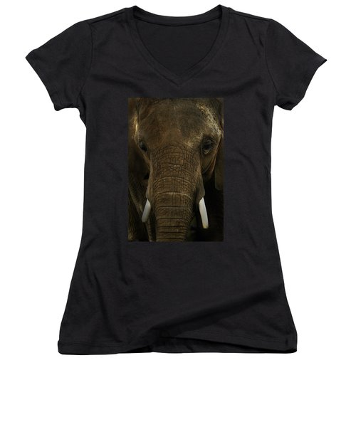 Women's V-Neck T-Shirt (Junior Cut) featuring the photograph African Elephant by Michael Cummings
