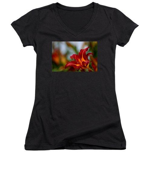 After The Rain Came The Flowers  Women's V-Neck T-Shirt (Junior Cut) by Paul SEQUENCE Ferguson             sequence dot net