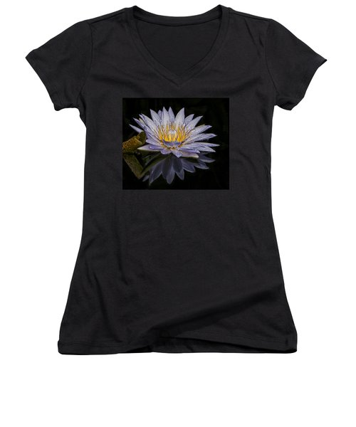 After The Rain Women's V-Neck T-Shirt (Junior Cut) by Roman Kurywczak