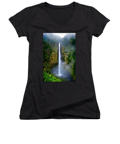 Akaka Falls Women's V-Neck T-Shirt (Junior Cut) by Christopher Holmes