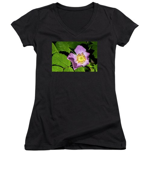 Women's V-Neck T-Shirt (Junior Cut) featuring the photograph Alberta Wild Rose Opens For Early Sun by Darcy Michaelchuk
